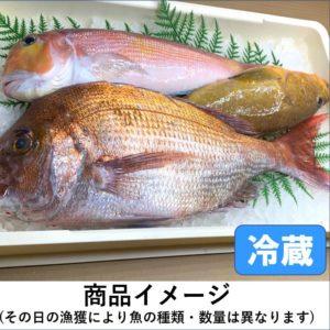 目利きの鮮魚BOX(高級版)3kg前後